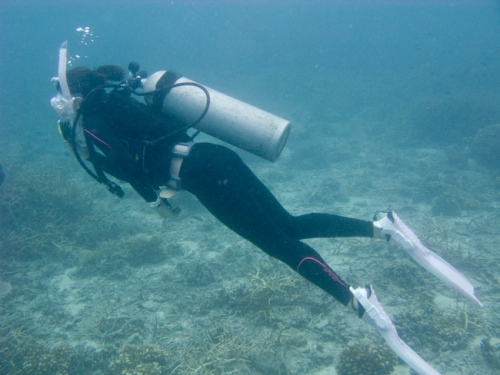 img_0810-jessica-underwater